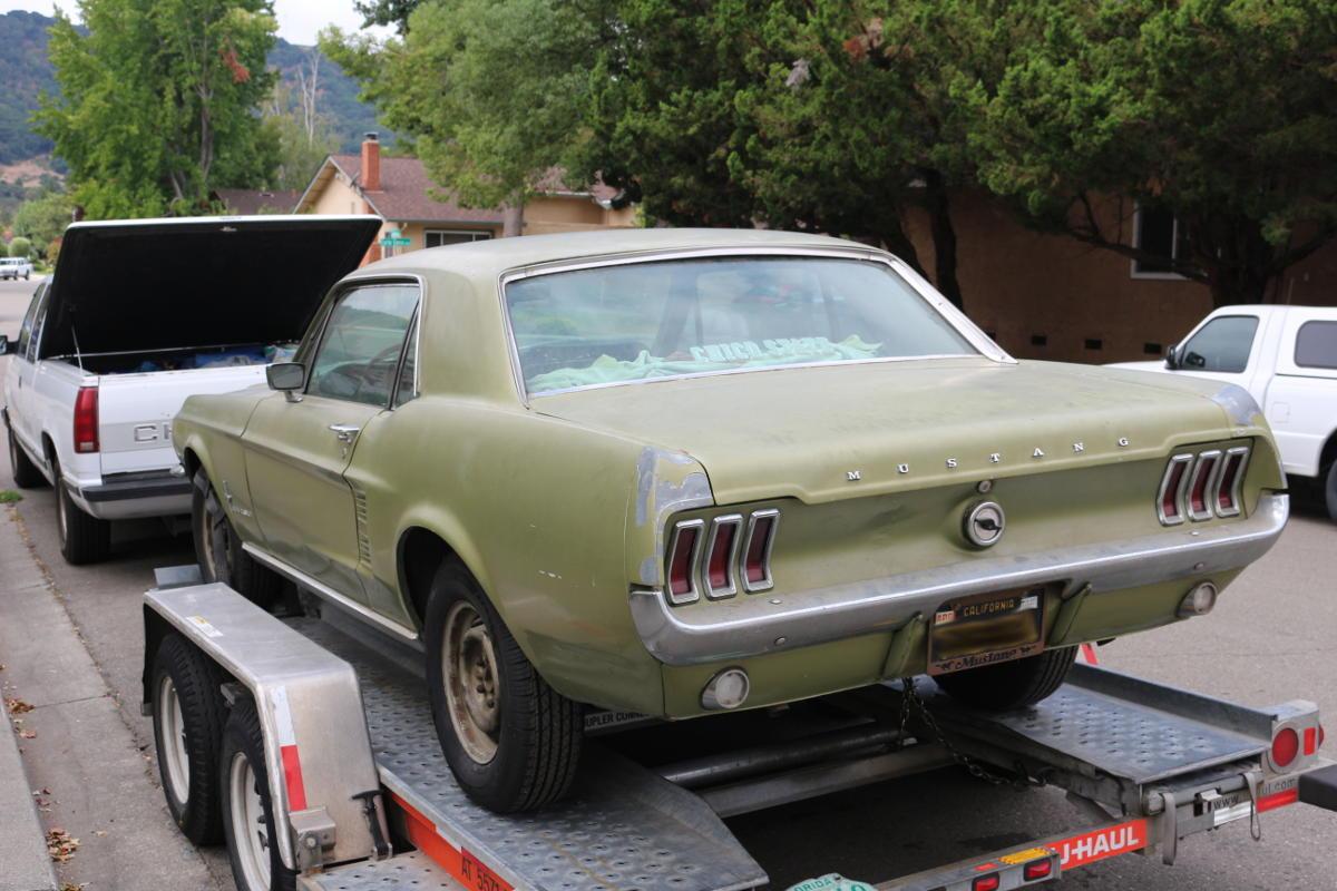 1967 Mustang Rear
